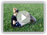 Obedience with Ernest Lagotto Romagnolo HD Quality!