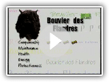 Breed All About It - Bouvier des Flandres
