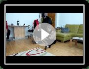 Entlebucher Mountain Dog / Entlebucher Sennenhund: Freude über Besuch zum 2. Geburtstag