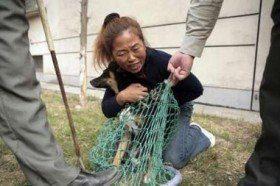 Mujer china pide a los policías que no sacrifiquen a  su perro. Beijing -2006, antes de los Juegos Olímpicos.