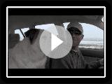 TIERHEIM - Doofy ist Back – Sitz Fahrer!