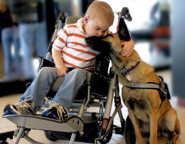 La relación especial entre un niño enfermo y su perro