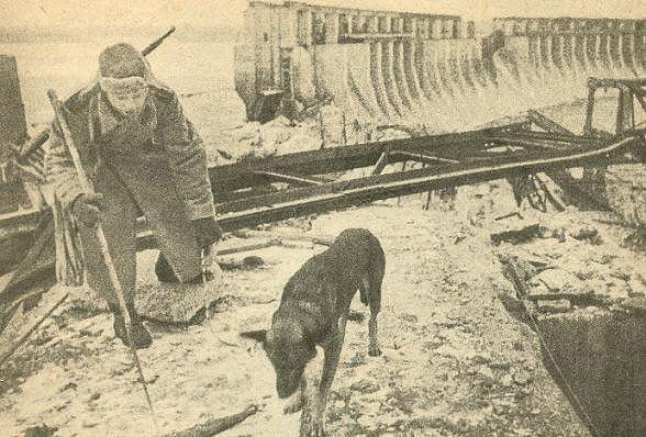 Soldado ruso con el perro