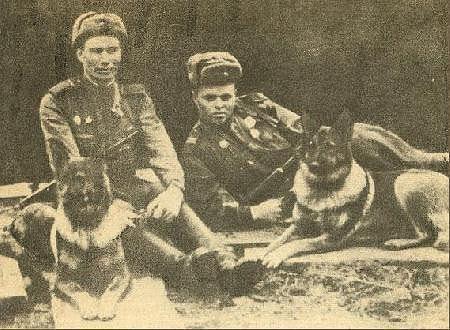 Soldados rusos con pastores alsacianos