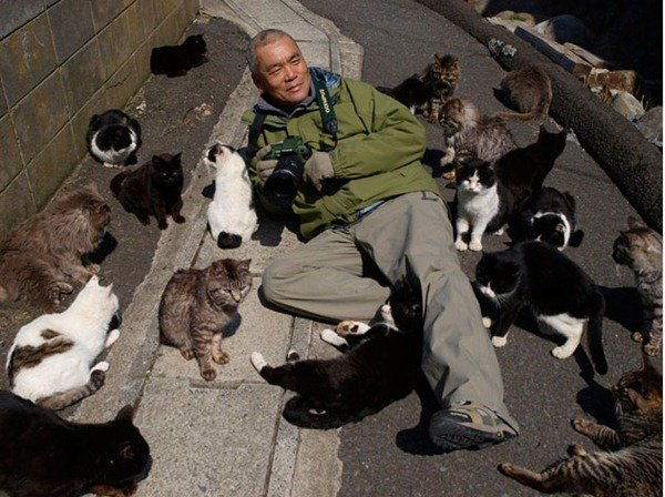 992-Tashirojima-Cat-Island