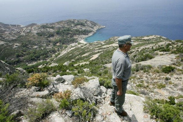 993-An Italian forestry worker watches the coast from a hill on the famous Montecristo island