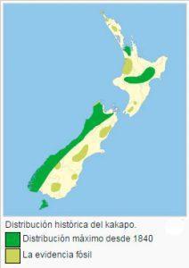 mapa-kakapo