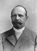 Pfirsichköpfchen - Anton Reichenow